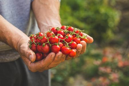 food-bio-organic-aitor-sanchez